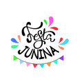 festa junina - brazil june festival party vector image