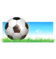 football ball soccer ball vector image vector image