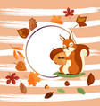 squirrel hugging acorn and standing on grass in vector image vector image