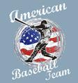 baseball us flag vector image vector image