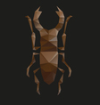 Beetle abstract isolated vector image vector image