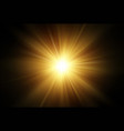sun rays transparent effect isolated on black vector image