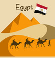 caravan of camels in egypt near great pyramids vector image