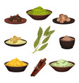 flat set of various natural spices vector image