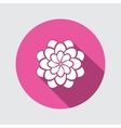 Flower icon Dahlia aster daisy chrysanthemum vector image