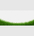 green grass border and isolated transparent vector image vector image