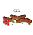 grilled sausage realistic detailed vector image