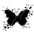 grunge butterfly shape and paint blobs splattered vector image vector image