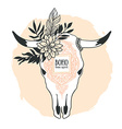 Hand drawn cow skull with ornament flower leaves