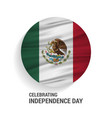 mexico independence day abstract waving flag vector image