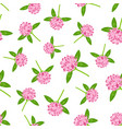 seamless pattern with clover flowers vector image