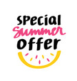 special summer offer lettering vector image vector image
