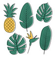 tropical leaves collection vector image vector image