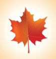 autumn maple leaf on colorful background vector image