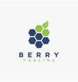 abstract fruit berry logo icon template vector image