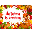 autumn nature frame of fall season poster template vector image vector image