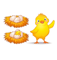 egg and little chicken vector image vector image