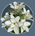 painted bouquet of white lilies in a circle vector image vector image
