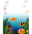 Underwater scene with fish swimming vector image vector image