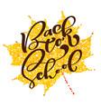 back to school handwritten lettering text label vector image vector image