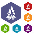 bonfire icons set hexagon vector image vector image