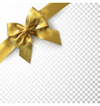 golden bow and ribbon vector image vector image