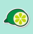lime sticker on blue background colorful fruit vector image