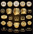 super collection golden retro vintage badges vector image vector image