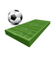 3d soccer football field and ball vector image vector image