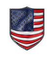 badge with flag united states of america in vector image vector image
