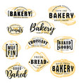 bakery shop cakes pastry sketch lettering vector image vector image