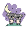 cute couple koala in the mountain with moon and vector image vector image