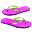 Flip Flops vector image