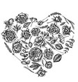 heart floral design with black and white roses vector image