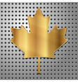 leaf of gold vector image vector image