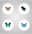 realistic hairstreak bluewing copper and other vector image vector image