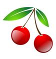 red simple cherry berries vector image