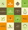 Set of vegan and vegetarian icons vector image