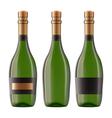 bottle of champagne vector image