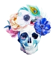 Anemones and scull vector image vector image