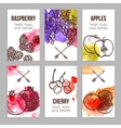 Cards With Fruits vector image vector image