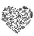 heart floral design with black and white ficus vector image vector image