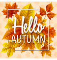 hello autumn leaves with drop water vector image vector image