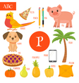 Letter P Cartoon alphabet for children Pear pig vector image vector image