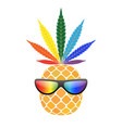 pineapple golden with rainbow cannabis leaf vector image
