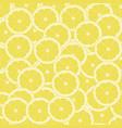 slices of lemon vector image