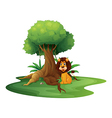 A lion sitting under the big tree vector image vector image