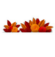 autumn flowers and leaves beautiful background vector image vector image