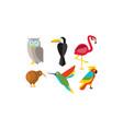 birds set owl flamingo parrot hummingbird vector image