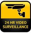 CCTV symbol vector image